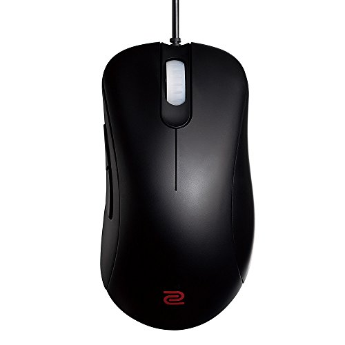 - BenQ Zowie EC1-A Ergonomic Gaming Mouse for Esports (Large)