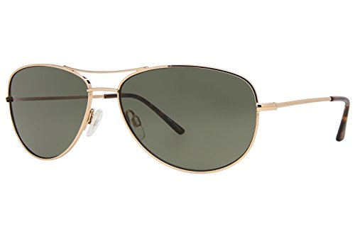 Ann Taylor AT0913 Sunglasses - Frame GOLD, Lens Color - Ann Sunglasses Taylor