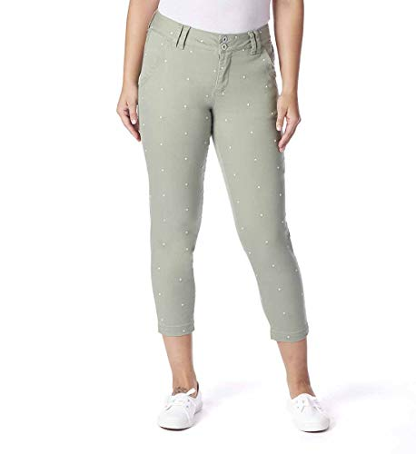 Jag Jeans Women's Flora Chino Crop, New Leaf Polka dot, ()