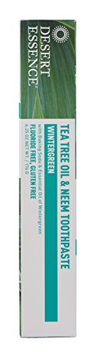 Desert Essence Natural Tea Tree Oil and Neem Toothpaste, Wintergreen,6.25 Oz (Pack of 3) by Desert Essence (Image #2)