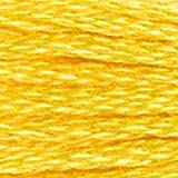 DMC 117-973 6 Strand Embroidery Cotton