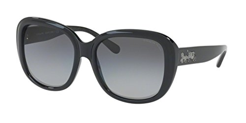 Coach HC8207F Sunglasses Gunmetal Gradient