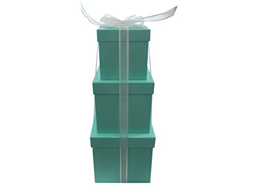 - LAC Design Nested Boxes - Set of 3 for Baby Shower, Weddings, and Any Party (Robins Egg Blue)