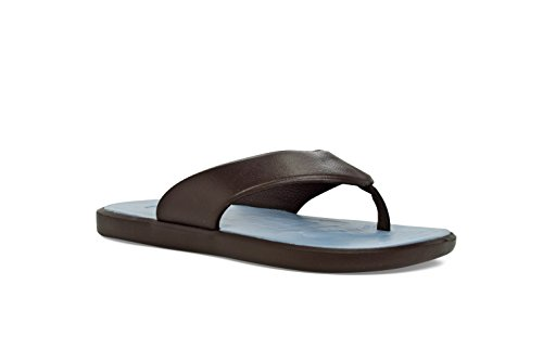 W5 Lt Comfort Blue Unisex M3 Chocolate Casual 2 Skiff SoftScience The Shoes 0 q4H7C