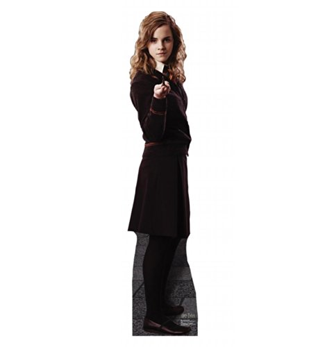 Harry Potter and the Order of the Phoenix Cardboard Standups