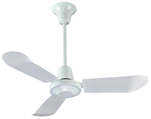 Dayton 5NPZ2 Ceiling Fan, 1 Spd, 36 In, 120 Volt