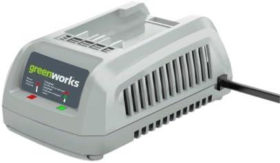 Amazon.com: Greenworks 29342 24-volt Cargador para 2 ...