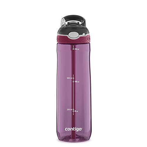 Contigo 2063284 Ashland Water Bottle, 24 oz, Passion Fruit