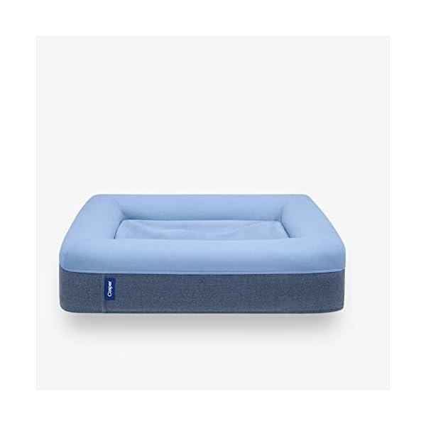 Casper DOGBD-MB-BU-US-JEF Memory Foam Pet Bed, Medium, Blue 1
