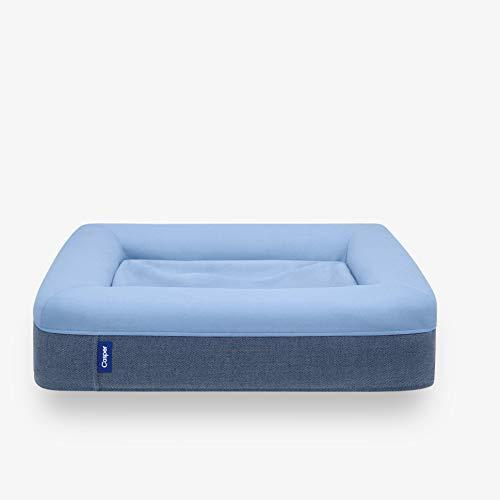 Casper Dog Bed, Plush Memory Foam, Large, Blue