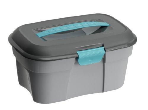 Rotho 5512810086 Putzbox aus Kunststoff (PP), mit herausnehmbarem Einsatz und Griff, geeignet für Aufbewahrung und Transport von Utensilien, Inhalt ca. 6.3 l, circa 33 x 21 x 16.5 cm (LxBxH), grau/anthrazit