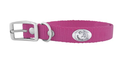 Zep-Pro Pink Nylon Concho Pet Collar, Florida State Seminoles, X-Large