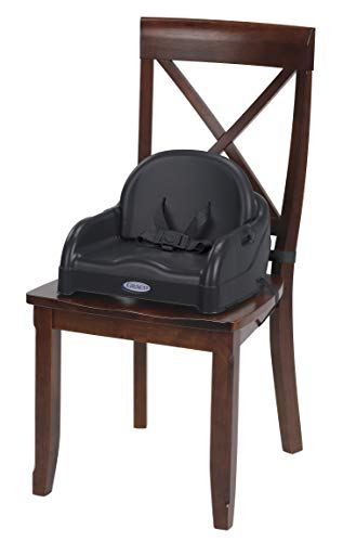 b1bbf4e84d2ca Graco Blossom 6-in-1 Convertible Highchair
