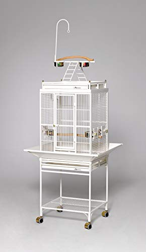 Avian Adventures Nina Playtop Bird Cage