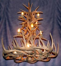 Reproduction Antler Whitetail Deer Tall Spruce Chandelier Light Xlarge