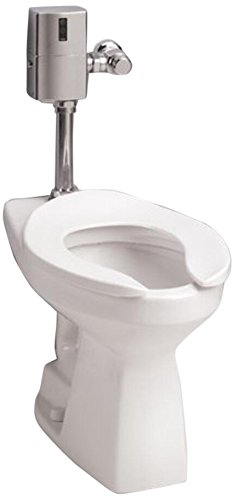 Toto CT705ELN-12 Commercial Flushometer High Efficiency 1.28 GPF, ADA Compliant, Elongated Toilet Bowl, Sedona Beige