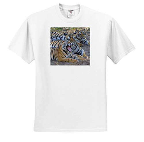 - 3dRose Danita Delimont - Tigers - Bengal Tigers, Bandhavgarh National Park, India - White Infant Lap-Shoulder Tee (24M) (ts_312704_69)