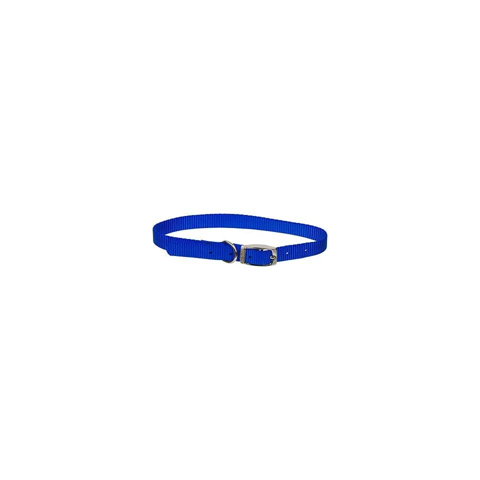 5/8 Single Ply Nylon Dog Collar in Blue, Medium