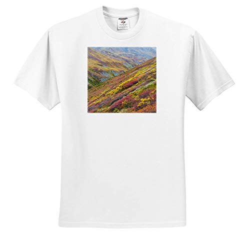 3dRose Danita Delimont - Alaska - USA, Alaska, Brooks Range. Tundra on Mountain Landscape. - Toddler T-Shirt (2T) (ts_314465_15) White