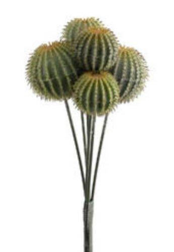 Allstate CB1310-GR 14 in. Barrel Cactus On Stem green- Case of 12