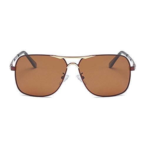 negra hombre de Aviator día de hombres Gafas Eyewear Gafas de Marrón polarizadas aleación para para sol con de visión de estuche conducción de lente E0wqURw