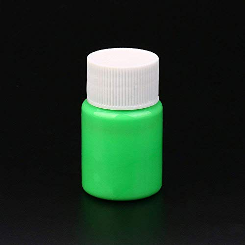 WensLTD Glow in The Dark Paint, Glow in The Dark Acrylic Luminous Paint Bright Pigment Party Decoration DIY (H) ()