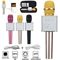 POLYGOLD PG-119 USB GİRİŞLİ KARAOKE MİKROFON