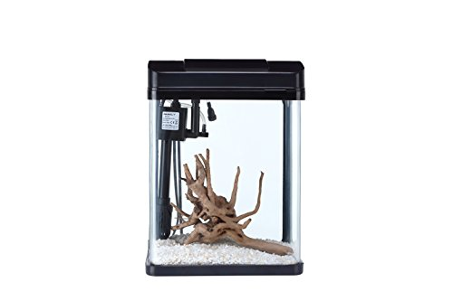 Glass Fish Tank 2.5 Gallons With LED Lighting System: Curved Corner Clear Aquarium W/ Easy To Install Water Filter Pump, Protective Lid With Feeding Flip, Comes W/ Detachable Spray Bar And Bio Sponge