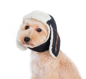 f34d87bb2eb Amazon.com   DOGO DESIGN Trapper Hat for Dogs (L)   Pet Supplies