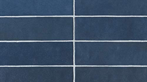 (Luxury Egzotic 2.5 x 8 Wall Tile in Blue, 1 SqFt)