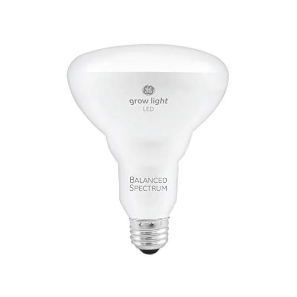 GE Lighting 93101230 9-Watt Horticultural LED Grow Light 1