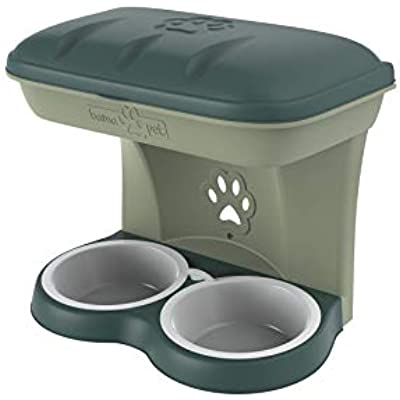 Bama Pet AP-19046 Elevated Food Stand - Large, Green