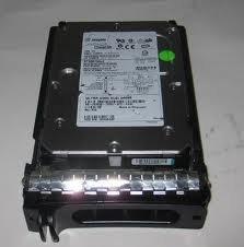 SUN 390-0281 300GB 10K FC Hard Drive StoredgeTek 6540 with Tray ()