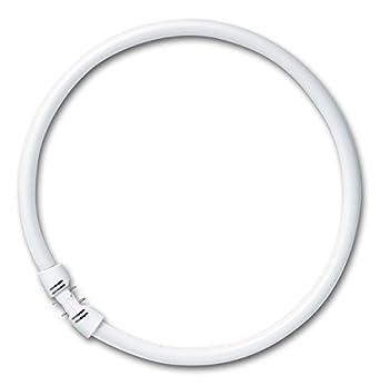 Leuchtstofflampe FC 40 Watt 840 neutralweiß 2GX13 Circular Ringlampe- Osram 40W 0130-040840o#1#fhu