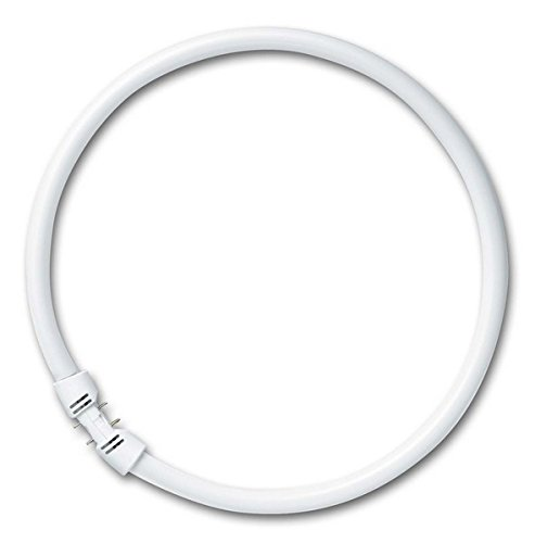 Ring-Leuchtstofflampe T5 FC 22 Watt 840 2Gx13 - Osram FC 22 W/840