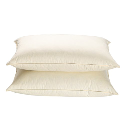 ther Blended Filling Pillows,Ultra Soft For Sleeping,600 Thread Count 100% Cotton Fabric,Ivory Queen Size (Set of 2) (Soft Feather Pillow)