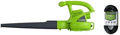 Greenworks 9 Amp Electric 2-Speed Leaf Blower 2401502