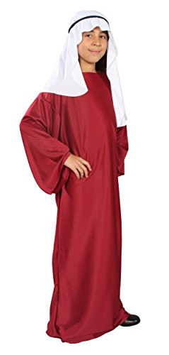 Burgundy Wiseman Child Costume (Alexanders Costumes Story of Christ Biblical Gown Child Costume, Burgundy,)