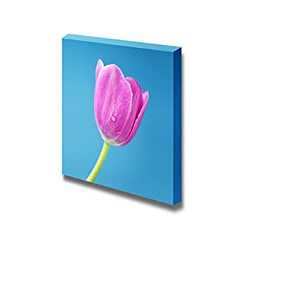 Closeup View of a Single Pink Tulip on Blue Background Floral Photograph - Canvas Art Wall Art - 12