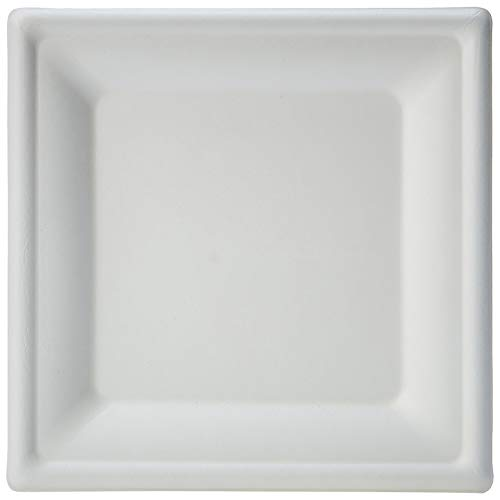 AmazonBasics Compostable Square Plate, 8-Inches, 500-Count