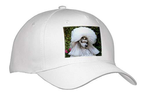 (Sandy Mertens Dog Designs - Funny New Poofy Hairdo on Large White Poodle, 3drsmm - Caps - Adult Baseball Cap)