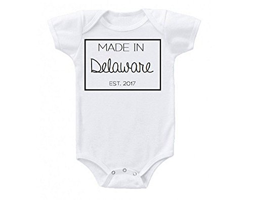 Promini Made in Delaware Babe Cute Funny Baby Onesie Gift No