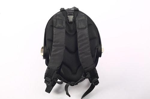 Romsion Accessories Sac /à dos pour moto Motif Pangolin