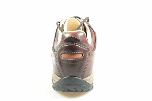 Identity Men Meindl Chaussures nbsp; Ascona w66X1P