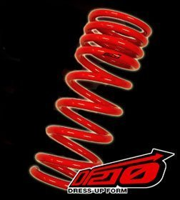 (Tanabe TDF024 DF210 Lowering Spring with Lowering Height 1.8/1.3 for 1998-2005 Lexus GS300)