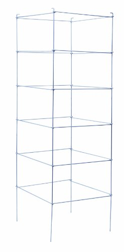 (Panacea Products 89714 Folding Professional Gauge Galvanized Tomato Cage and Plant Support, 72 by 21-Inch)