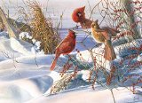 Birds of a Feather 1000 piece Puzzle by Outset Media Games