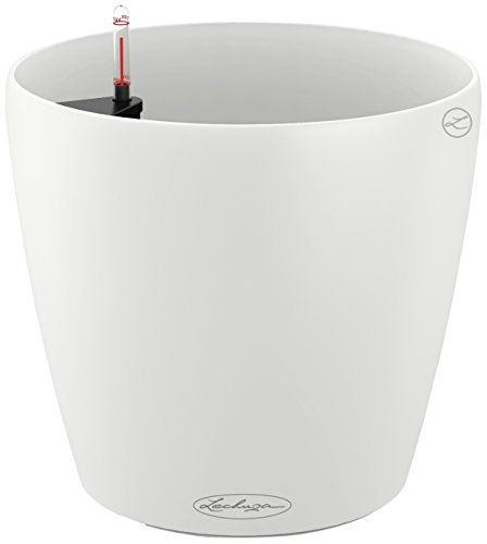 Lechuza Classico Color 21 Self-Watering Garden Planter for Indoor and Outdoor Use, White Matte ()