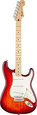 Fender Standard Stratocaster Electric Guitar 1 by Wilson Jones