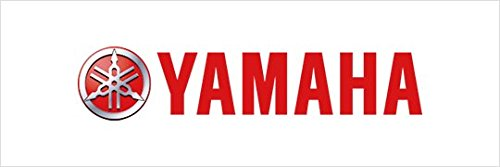 Yamaha 4KB841690000 Headlight Guard
